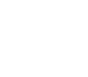 Ecole Nationale Polytechnique Logo White